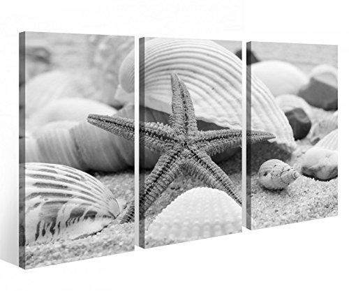 Seesterne Tee (Leinwandbild 3 Tlg. Seestern Muschel Strand Meer Ozean Leinwand Bild Bilder auf Keilrahmen Holz - fertig gerahmt 9O967, 3 tlg BxH:120x80cm (3Stk 40x 80cm))