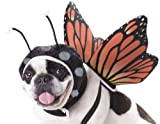 Animal Planet Dog Costume Butterfly Hunde Fasching Kostüm Schmetterling Small