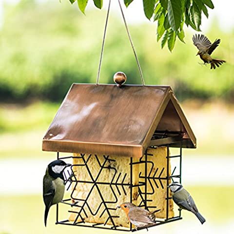 Mangeoire à oiseaux d'extérieur, Wandlee mangeoires à oiseaux en métal à suspendre pour Parrot pigeon panoramique terrasse Jardin–23cm*17cm