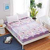 HUSHCH Housse Matelas Anti Punaise de litDrap de lit avec taie d'oreiller imprimé...