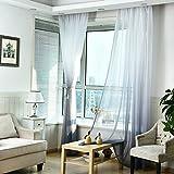 Elec tech Voile Vorhang mit Stangen Aufhängung transparent Gardine Farbverlauf Fenster Gaze ensterschal Vorhänge für Wohnzimmer Kinderzimmer Schlafzimmer 100 x 270 cm (B x H) 2er-Set (E)