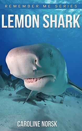 Lemon Shark: Amazing Photos & Fun Facts Book About Lemon Shark For Kids (Remember Me Series) (English Edition) (Lemon Shark)