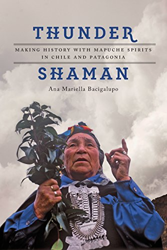 Thunder Shaman: Making History With Mapuche Spirits in Chile and Patagonia di Ana Mariella Bacigalupo