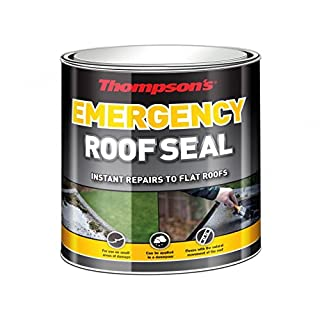 TERS25L 2.5L Thompsons Emergency Roof Seal