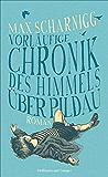Vorläufige Chronik des Himmels über Pildau: Roman (Literatur-Literatur)