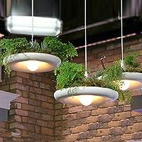 Bluelover Lampada di alluminio sospensione Sky Garden calata balcone Hall Pot piante