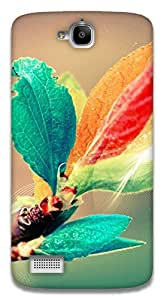 The Racoon Lean blooming branch hard plastic printed back case / cover for Huawei Honor Holly