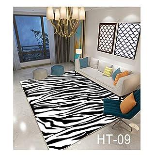 WYFDM 3D Printed Carpet, Flannel Carpet Bedroom Bedroom Bedroom Carpet Children es Slislislip Carpet Bed Living Room Dining Room Lobby Pad 80 * 160cm (32 * 64 Zoll),HT9