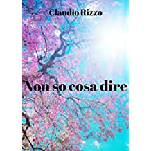 Non so cosa dire (Italian Edition)