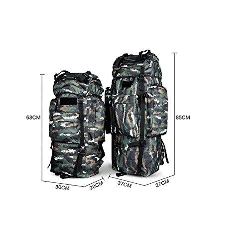 Asequible Mountaintop 65+10L Mochila de Senderismo, 36 x 25