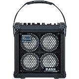 Roland Micro Cube Bass RX-Verstärker