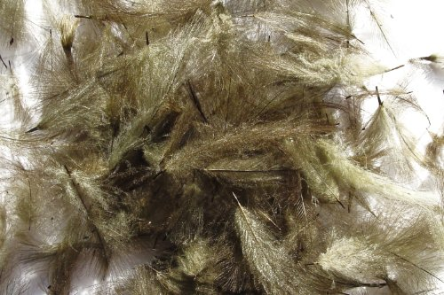 1g plumes de CDC (Cul de Canard) GRIS OLIVE pour montage de mouche