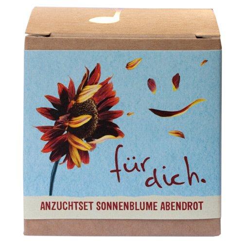 """Geschenk-Anzuchtset """"Für Dich"""" - Sonnenblume Abendrot"""