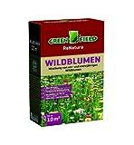 Greenfield Wildblumen Blumensaat | 0,25 kg mehrjährige Wildblumen