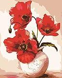 OBELLA Malen nach Zahlen Kits || Rot Poppy Flower Rote Mohnblume Blume 50 x 40 cm || Malen nach Zahlen, DIGITAL Ölgemälde (Mit Rahmen)