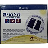 Wellion Frigo XXL med cooler bag, 1 St