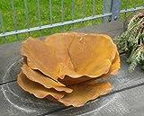 terracotta-toepfe-de Blüte ca. 30 cm aus Metall in Edelrost, Rost Deko für...