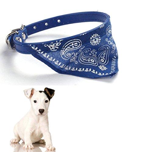 accessoires-collier-pour-chien-kolylong-collier-chien-chien-chat-chiot-de-lit-coussin-maison-douce-e