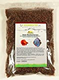 Zoomeister - Premium Rote Mückenlarven getrock. Nachfüllpack (1L / 1000ml / 80g)