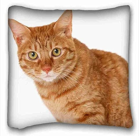 Soft Pillow Case Cover ( Animals cat gingers tabby eyes ) Pillow Cushion Case Cover One Sides Printed 16x16 Inches suitable for X-Long Twin-bed