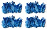#8: Rooh dream catcher - pack of 4 blue colour feathers (40 x 4)