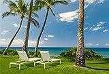 YongFoto 1,5x1m Sfondo Fotografico Mare Spiaggia bianca Sedia Albero cocco Erba verde Prato Cielo blu Nuvola bianca Natura Paesaggio Fondale Foto Festa Bambini Boby Nozze Adulto Partito Studio