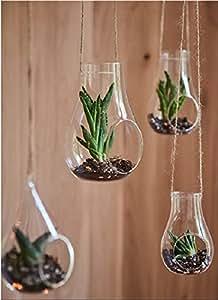 vase aus glas mit loch zum aufh ngen f r pflanzen deko haus und k che f r. Black Bedroom Furniture Sets. Home Design Ideas