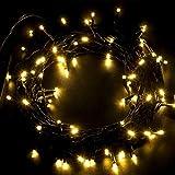 R.P.L. LED Lichterkette Weihnachten Christmas 300er Energiesparend Innen Innenbereich Weihnachtsbeleuchtung (Warmweiß) Programme