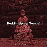 Meditationsmusik (Hang Drum Musik)