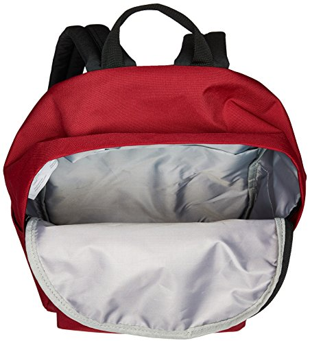 Best supreme backpack in India 2020 AmazonBasics 21 Ltrs Classic Backpack - Red Image 6