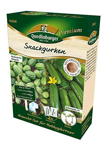 Anzuchtset Gurkenkombination von Quedlinburger Saatgut