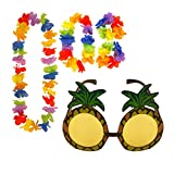 Pineapple Sunglasses & 4pc Hawaiian Multi-Coloured Lei Flower Garland Fancy Dress Set