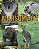 This Book will help you learn about the basic facts and truths about Marsupials. Know what they are like, what they eat, and how their way of life is.