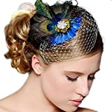 Chic Women Colorful Peacock Feather Crystal Rhinestone Hair Clip hairpin (G)