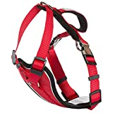 Trespass Tanked Dog - Pettorina di sicurezza per cani (L/XL) (Rosso)