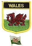 Tanto Badges Toppa Ricamata con Bandiera del Galles, da Cucire o Applicare con Ferro da Stiro, con Spilla in Metallo smaltato