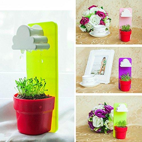 Kicode Wolke Kreativ Ranke Blumentopf Pflanzer für Garten Rainy Balkon Dekor