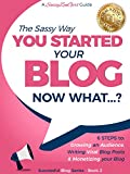 You Started a Blog - Now What....?: 6 Steps to Growing an Audience, Writing Viral Blog Posts & Monetizing your Blog (Beginner Internet Marketing Series Book 3) (English Edition)