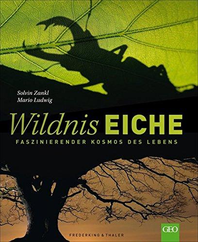 Wildnis Eiche: Faszinierender Kosmos des Lebens