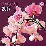 Nouvelles Images Calendrier 2017 Fleurs 16 mois 29 x 29 cm...