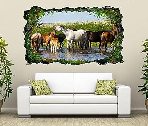 3D Wandtattoo Pferd Pferde Wasser Stute Herde Bild selbstklebend Wandbild sticker Wohnzimmer Wand Aufkleber 11H378, Wandbild Größe F:ca.