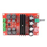2 * 100W TPA3116 D2 Dual Channel Digital Audio Endverstärker Board DC12V-24V für Arduino