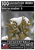 100 Lizenzfreie Profi-Bilder/Fotos! Winterzauber 3 (Royalty Free) Foto-CD 350 MB