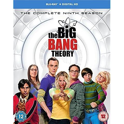 Big Bang Theory - Season 9