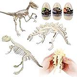 deAO Set de 3 Esqueletos de Dinosaurio Figura de Juguete para Montar...
