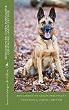 education du chien polyvalent  compagnie, garde,defense...