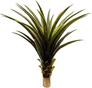 Fourwalls 80cm Artificial Aloe Vera Plant