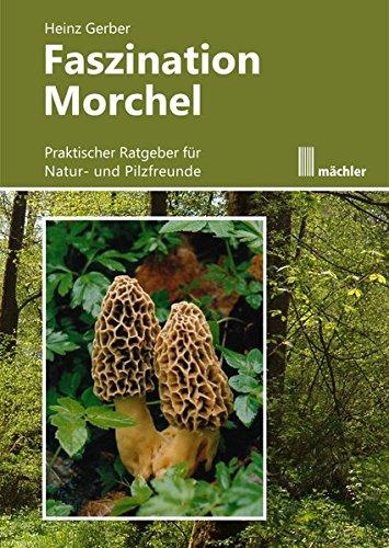 Faszination Morchel: Praktischer Ratgeber für Pilz- und Naturfreunde (Gerber Foto)