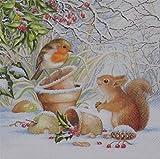 Winter Robin Eichhörnchen weiß 3-lagig 20Papier Servietten Servietten 33x 33cm 33x 33cm