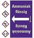 LEMAX® Rohrleitungsband Ammoniak flüssig,praxisbewährt,ab Ø 50mm,violett/weiß,33m/Rolle